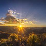 Golden Sunlight Desert Scene Poster