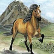 Golden Tolt Icelandic Horse Poster