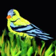 Goldfinch In The Garden Poster