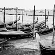 Gondolas By St Mark's Poster