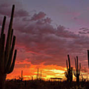 Goodnight Tucson Poster