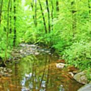Georgia Stream In Summer Poster