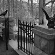 Surreal Gothic Gargoyle With Raven Black And White Gothic Gargoyles Gate Scene Poster
