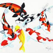 Graceful Koi Poster