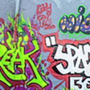Graffiti Art 05102017a Poster