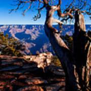 Grand Canyon 27 Poster