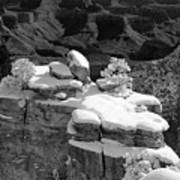 Grand Canyon Snow Black And White Photo Poster