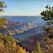 Grand Canyon View With Trees Poster