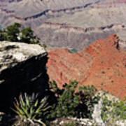 Grand Canyon35 Poster