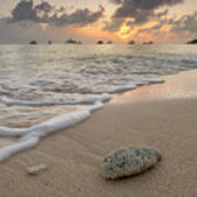 Grand Cayman Beach Coral At Sunset Poster