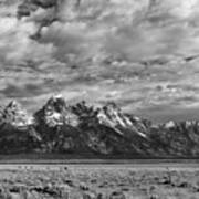 Grand Teton Majesty Poster by Sandra Bronstein