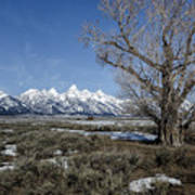 Grand Tetons From Gros Ventre Poster