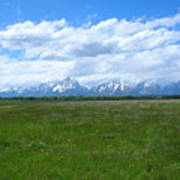 Grand Tetons Meadow Poster