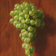 Grapes   Green Poster