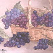 Grapes In Basket Poster