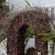 Grapevine Covered Stone Garden Door Poster