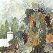 Grapevine Topiary Poster