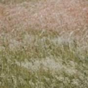 Grass Cloud Poster