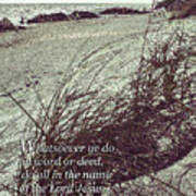 Grassy Dunes Colossians 3 Poster