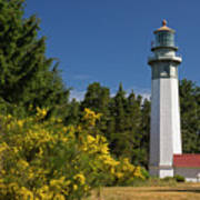 Grays Harbor Lighthouse H Poster