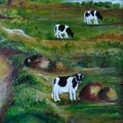 Grazing Cows. Poster