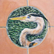 Great Blue Heron Poster by Dy Witt