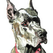 Great Dane Watercolor Poster