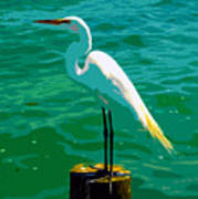 Great Egret Emerald Sea Poster