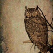 Great Horned Owl With Textures Poster
