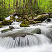Great Smoky Mountain Roaring Fork Spring Cascade Poster by Mark VanDyke