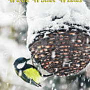 Great Tit In The Snow Card Poster