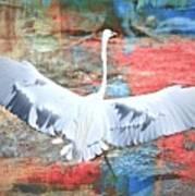Great White Egret Landing Poster