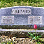 Greaves Poster