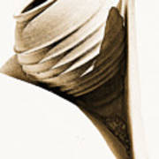 Greek Urn Poster