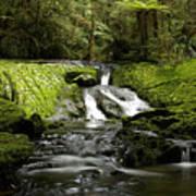 Green Cascade Poster