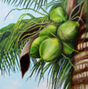 Green Coconuts- 01 Poster