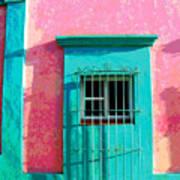Green Door By Darian Day Poster
