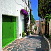 Green Door Passage  Poster