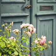 Green Door With Rosebush Poster