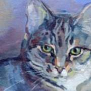 Green Eyed Tabby - Thomasina Poster by Kimberly Santini