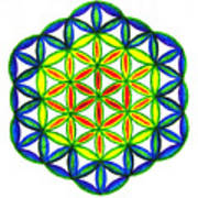 Green Flower Of Life Poster