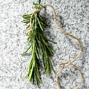 Green Fresh Rosemary On Granite Background Poster