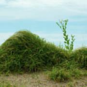 Green Grass Mountain Poster