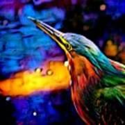 Green Heron In Dramatic Hues Poster