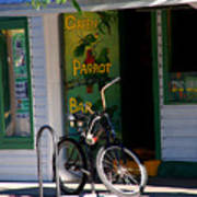 Green Parrot Bar Key West Poster by Susanne Van Hulst