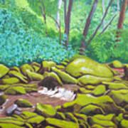 Green Rocks Poster