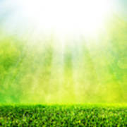 Green Spring Grass Against Natural Nature Blur Poster