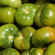 Green Tomatoes Poster by Frank Tschakert