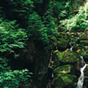 Green Waterfall Poster