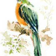Green Wild Bird Poster